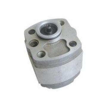 R918C02383 AZPF-22-022LRR20MB Pompë hidraulike gear