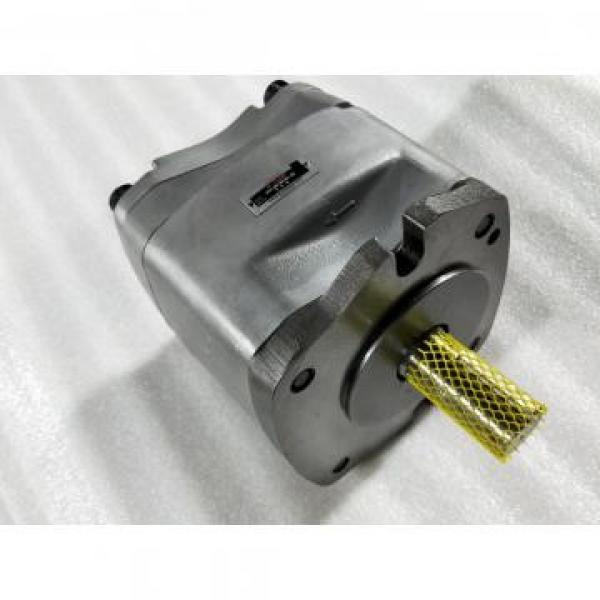 P8VMR-10-CBC-10 Pompë hidraulike pompë / Motor