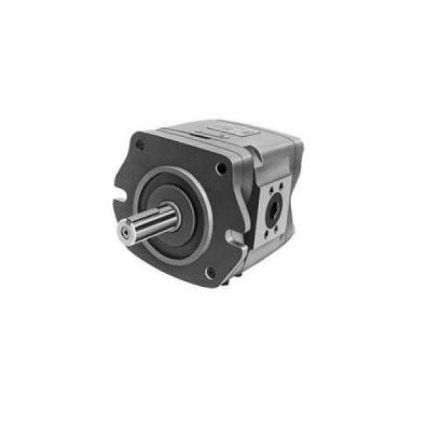 IPH-5B-50-11 Pompë hidraulike gear